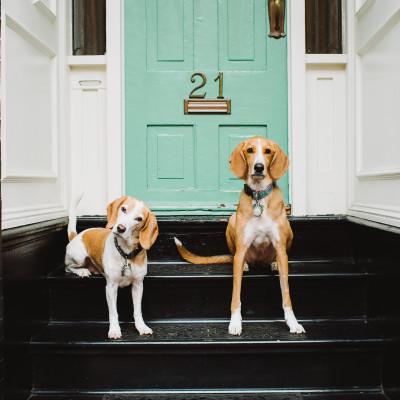 Atticus & Sally, Best Friends Forever