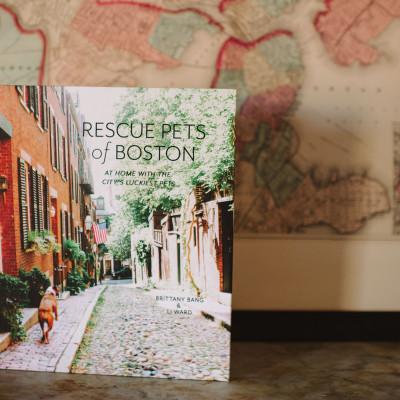 Rescue Pets of Boston Book Launch